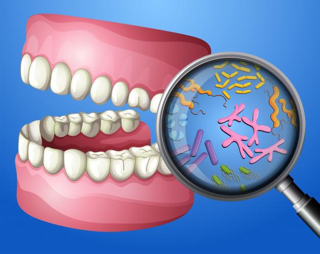 Normas para la higiene y cuidado de la boca